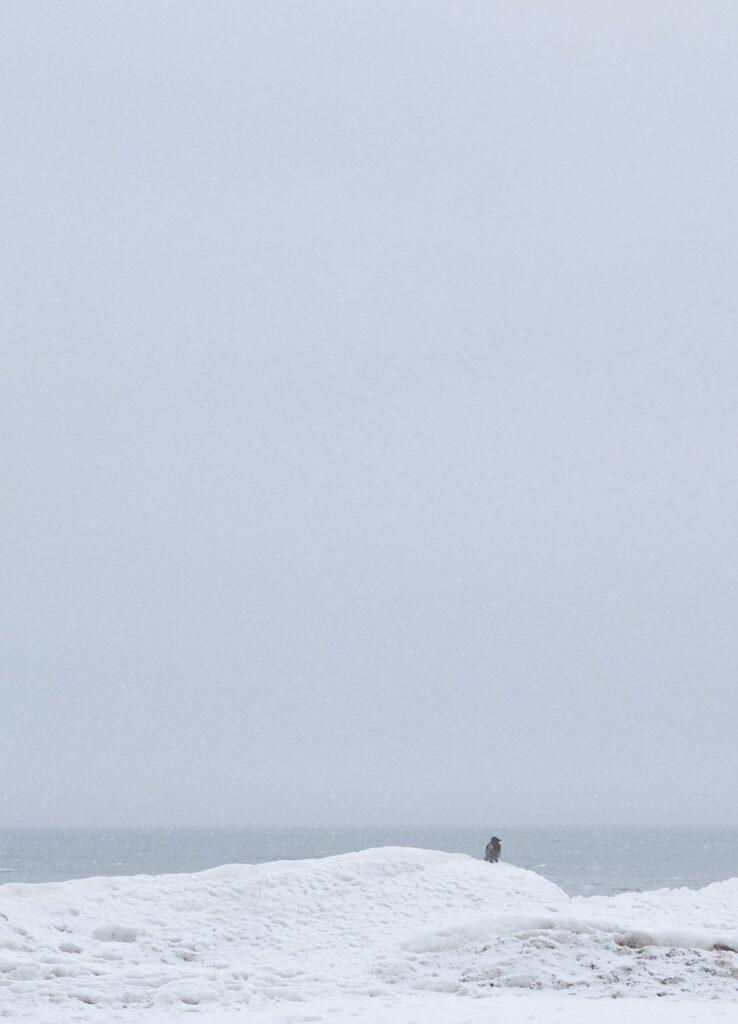 Lo que más extraño es la soledad real y voluntaria, la libertad para estar solo. Tomada en marzo de 2018 en Jurmala, Riga, a orillas del Mar Báltico. Ivan Sanczewski