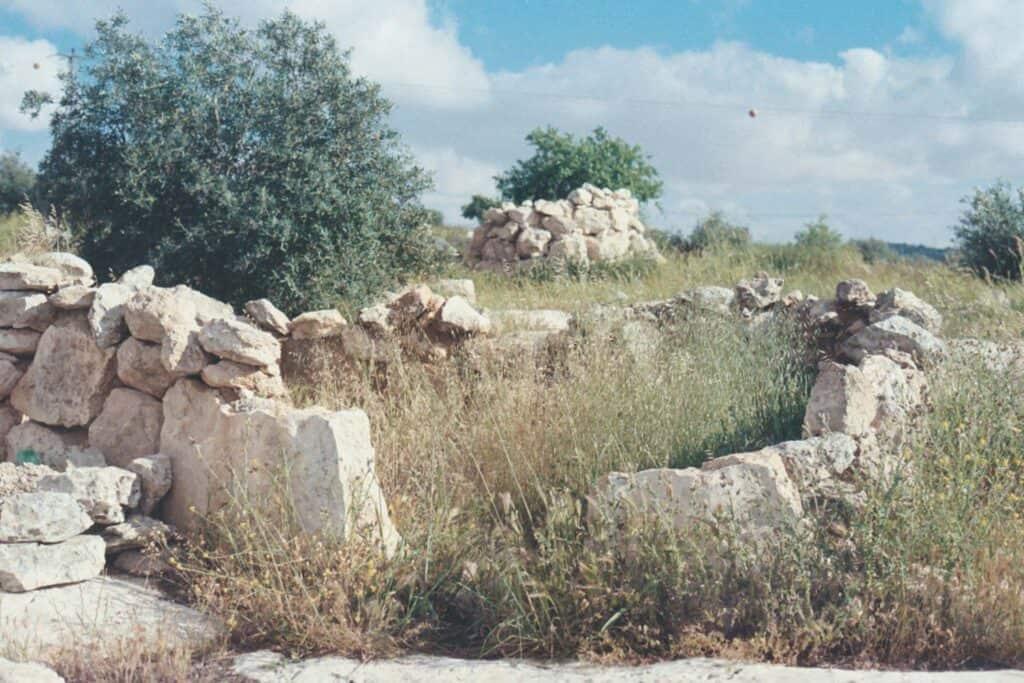 vol3n7-talithakoum-p2-20
