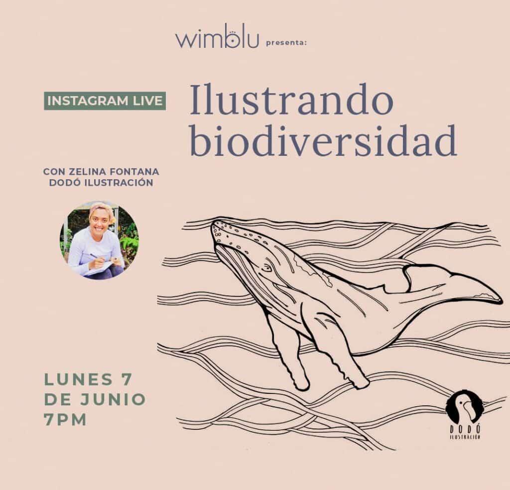 IG LIVE: Ilustrando Biodiversidad